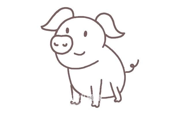 可爱猪简笔画画法步骤图片