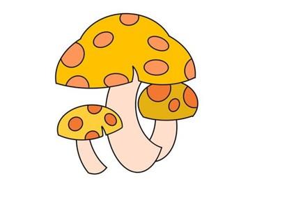 卡通蘑菇简笔画画法步骤图片