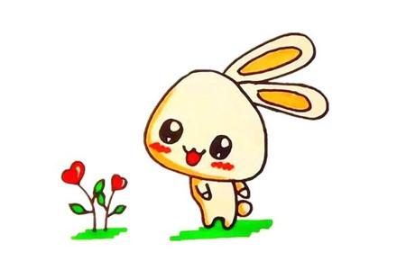 一步步教你学画小白兔简笔画步骤图解教程