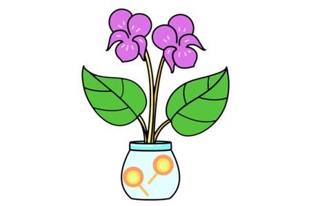 紫罗兰盆栽简笔画彩色画法步骤图片