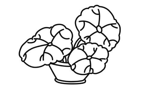 盆栽荷叶简笔画涂色作品