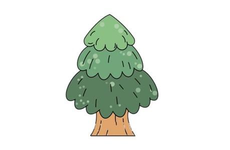 漂亮松树简笔画画法步骤图片教程