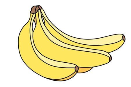 香蕉怎么画简笔画 彩色香蕉简笔画画法步骤教程