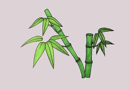 漂亮竹子怎么画简笔画简单好看