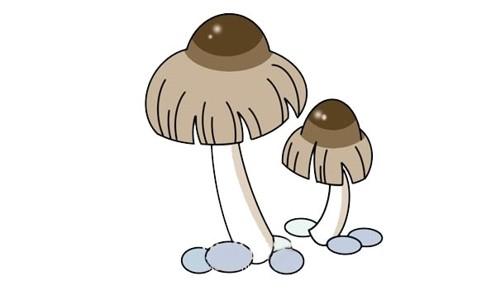 蘑菇简笔画简单画法步骤图解教程