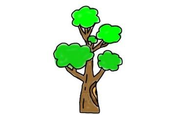 大树简笔画怎么画简单又漂亮-树的简笔画
