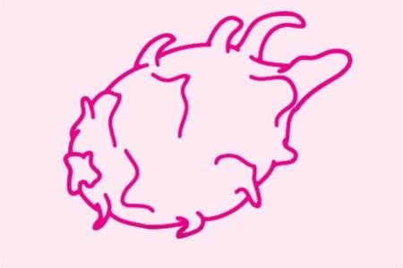 火龙果简笔画简单画法步骤