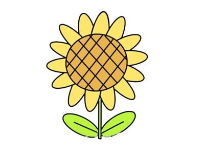 卡通向日葵简笔画画法步骤图片