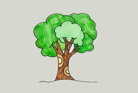彩色大树怎么画简笔画简单又好看