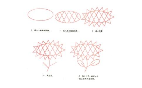 手绘向日葵简笔画画法步骤图