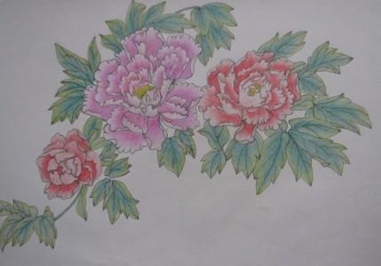 工笔画-艳丽的牡丹花