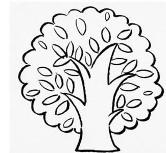 夏天的大树怎么画简笔画