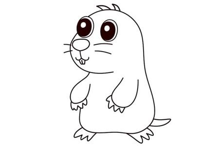 卡通鼹鼠简笔画画法图片