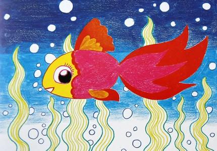 红色的金鱼
