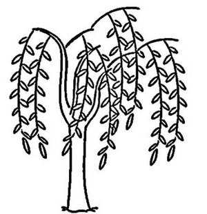 带小鸟的柳树简笔画图片 儿童春天柳树简笔画图片教程