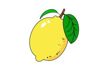 彩色柠檬简笔画画法步骤教程