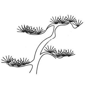 松树的多种画法-松树简笔画图片大全