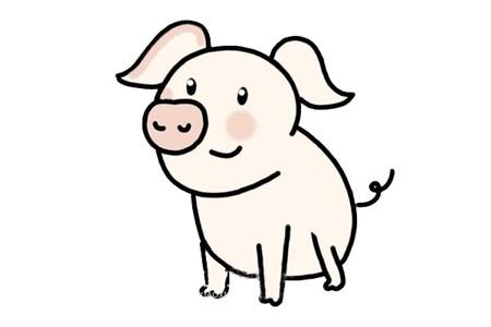 猪的简笔画 可爱猪简笔画画法步骤图片大全