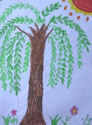 儿童画春天柳树图片