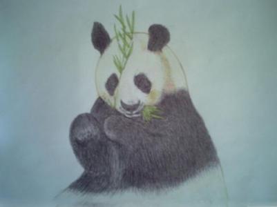 竹林里的大熊猫儿童画-小熊吃竹叶