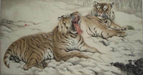 瞌睡的老虎