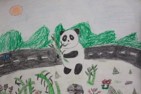 黑眼圈的熊猫