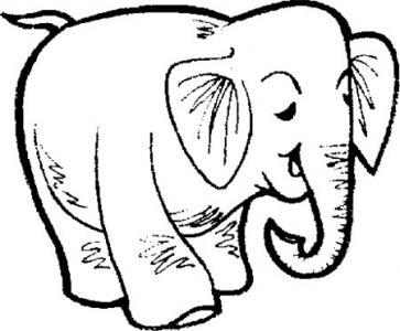 大象博士的故事